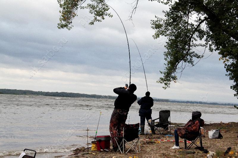 ловля рыбы в саратове на волге